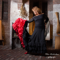 Flamenco - Patricia Baptist